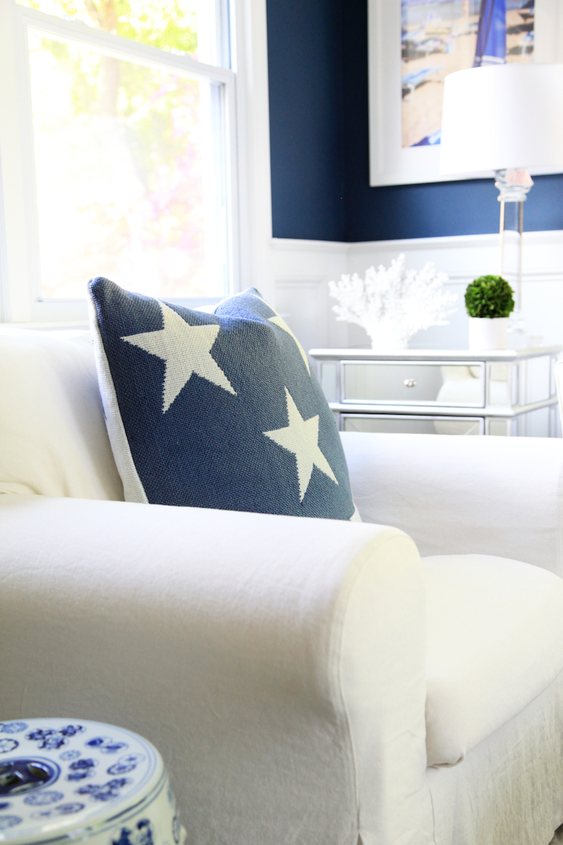 Dash and Albert Star Pillow