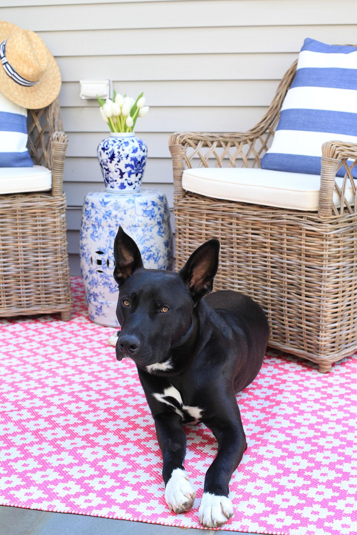 Dash and Albert Indoor Outdoor Rug