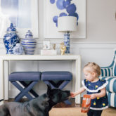 Brandless Baby and Pet Collections