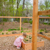How to Plant a Raised Bed Vegetable Garden
